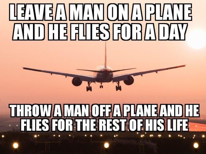 flies_for_a_day_DO5dhzXWAAA7ULh.jpg