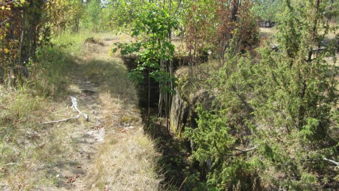 Länsimäki metsä 023.JPG
